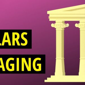 The 10 Hallmarks of Aging Explained
