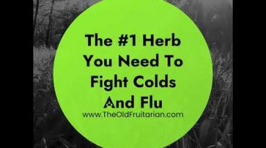 Kick Your Immune System in the Ass With This Winter Herb
