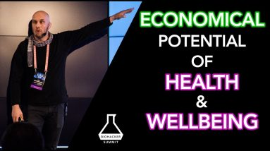 Aki Koivistoinen: Capital Flow In Health and Wellbeing